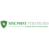 Nine Point Strategies Logo