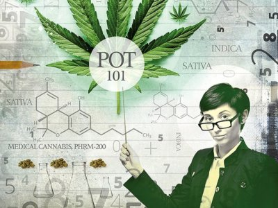 Cannabis 101? It may be legal, but few colleges offer marijuana curriculum