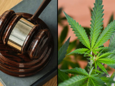 Federal Court Orders DEA To 'Promptly' Consider Marijuana Rescheduling…Or Else