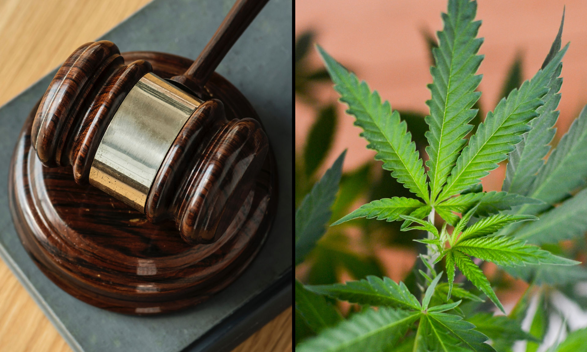 marijuana-legislation-bill-leaf-gavel