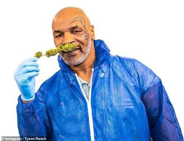 14606350-7124543-Boxer_Mike_Tyson_is_building_a_weed_empire_selling_premium_strai-m-30_1560185299745