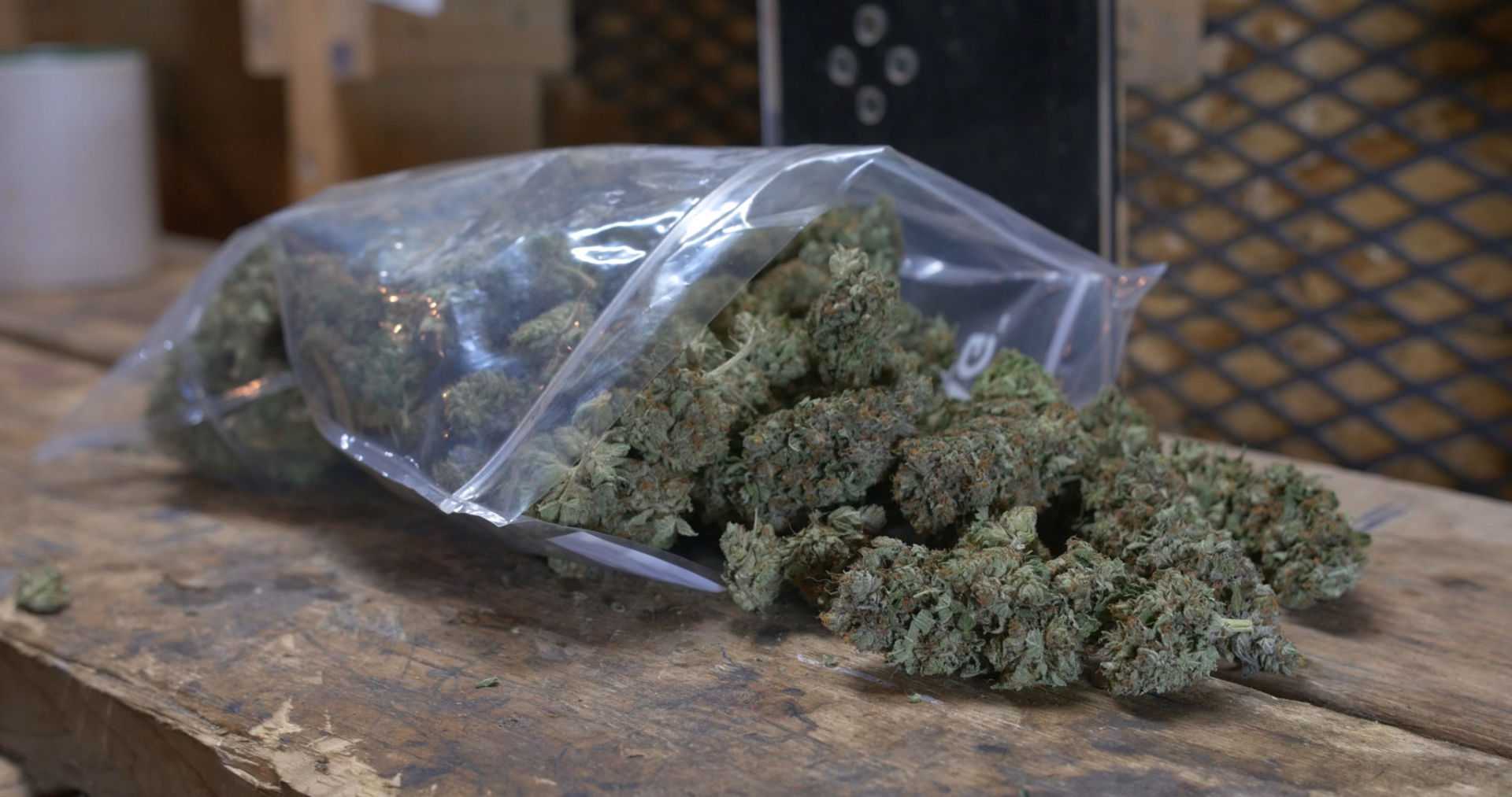 list-cannabis-dispensaries-affected-civil-unrest-grows-featured-2048×1080